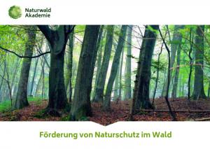 Förderleitfaden Naturschutz im Wald