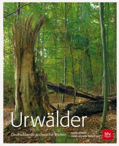 Titelbild des Buchs mit Wald