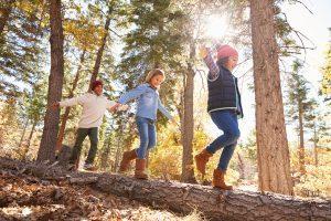 KInder balaniceren auf einem Baumstamm im Wald