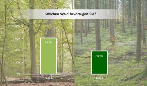 Umfrage zum Stadtwald Lübeck
