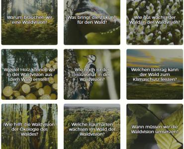 Foto von der Waldvisions Seite des Öko-Instituts
