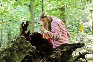 Reallabor Wald: Junge Forscher im Lübecker Stadtwald
