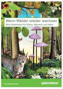 Titelbild der Waldvision