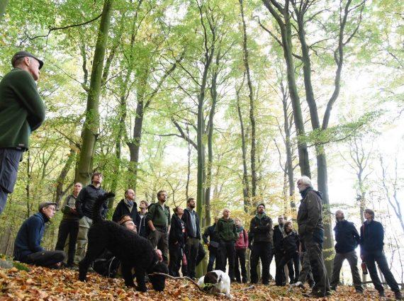 Führung durch den Lübecker Stadtwald