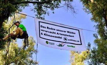 Banner zwischen zwei Weiden-Bäumen im bedrohten Auwald in Hamburg-Altenwerder