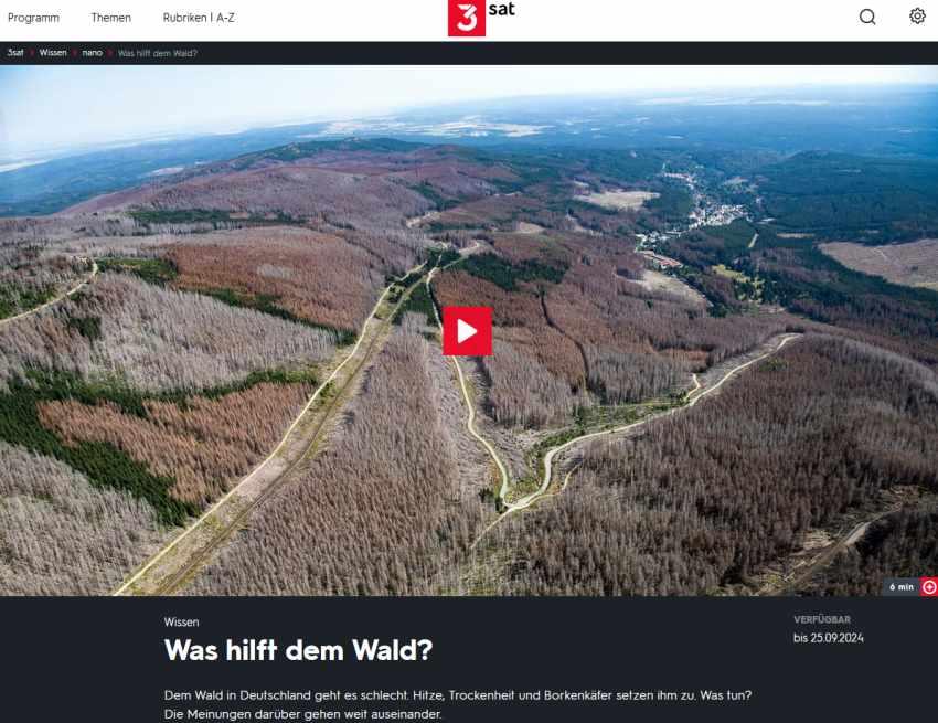 video zum Waldgipfel 2019