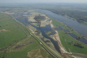 Flußauen an der Elbe