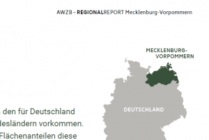 Regional Report Mecklenburg